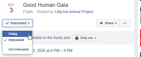 RSVP Yes